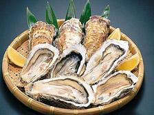 宫城县牡蛎