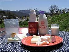 清里ミルクプラントの乳製品