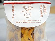 伊予柑クッキー